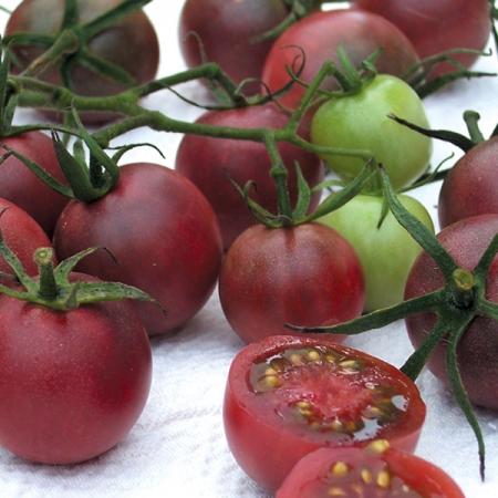 tomato black cherry cherry tomato seeds. Black Bedroom Furniture Sets. Home Design Ideas