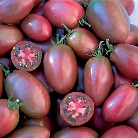 TOMATO PURPLE RUSSIAN   Heritage & Heirloom Tomato Seeds