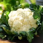 CAULIFLOWER CENDIS F1