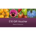 GIFT VOUCHER TEN POUNDS