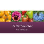 GIFT VOUCHER FIVE POUNDS